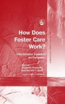 How Does Foster Care Work?: International Evidence on Outcomes - Richard Barth, Elizabeth Fernandez, James K Whittaker