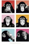 """Chimps Blank Book Journal: 100 pages, 6 x 9"""", lined - NOT A BOOK"""