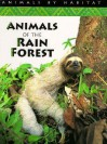 Animals of the Rain Forest - Stephen Savage