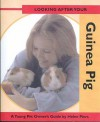Looking After Your Guinea Pig - Helen Piers