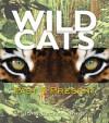 Wild Cats: Past & Present - John E. Becker, Mark Hallett