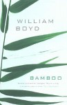 Bamboo: Non-Fiction 1978-2004 - William Boyd