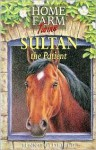 Sultan the Patient - Jenny Oldfield