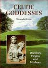 Celtic Goddesses: Warriors, Virgins and Mothers - Miranda Aldhouse-Green