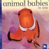 Animal Babies in Seas - Kingfisher, Kingfisher