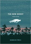 The New Ghost - Robert Hunter
