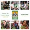 Crescent City Farmers Market Cookbook - Poppy Tooker, Alice Waters