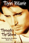 Through the Storm - Terri Marie