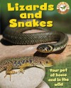 Pets Plus: Lizards and Snakes - Sally Morgan