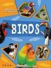 Birds (Amazing Life Cycles) - Brenda Williams