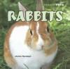 Rabbits - Joanne Randolph