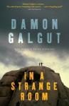 In a Strange Room: Three Journeys - Damon Galgut