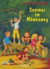 Sommer im Möwenweg - Kirsten Boie, Katrin Engelking