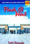 Flash Of Wind Vol. 12 - Taeko Watanabe