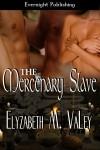The Mercenary Slave - Elyzabeth M. VaLey