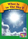 What Is in the Sky - Cindy Chapman, Wiley Blevins