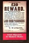 Irish Migrants in Modern Wales - Paul O'Leary