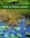 The Everglades - Nancy Furstinger