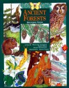 Ancient Forests: Discovering Nature - Margaret Anderson, Nancy Field, Karen Stephenson, Sharon Torvik
