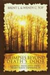 Glimpses Beyond Death's Door - Brent L. Top, Wendy C. Top