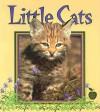 Little Cats - Bobbie Kalman, Tammy Everts