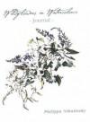 Wildflowers in Watercolour - Philippa Nikulinsky