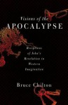Visions of the Apocalypse: Receptions of John's Revelation in Western Imagination - Bruce Chilton