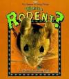 What is a Rodent? - Bobbie Kalman