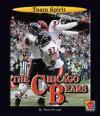 The Chicago Bears - Mark Stewart, Jason Aikens