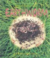 The Life Cycle of an Earthworm (The Life Cycle) - Bobbie Kalman