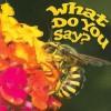 What Do You Say? - Holly Karapetkova