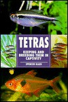 The Guide to Owning Tetras - Spencer Glass