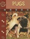 Pugs (Eye To Eye With Dogs) - Lynn M. Stone
