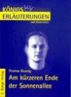 Am kürzeren Ende der Sonnenallee - Volker Krischel, Thomas Brussig