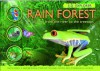 3-D Explorer: Rain Forest: A Journey from the River to the Treetops - Joe Fullman