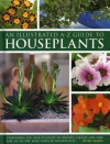 An Illustrated A-Z Guide to Houseplants: Everything You Need to Know to Identify, Choose and Care for 350 of the Most Popular Houseplants - Peter McHoy