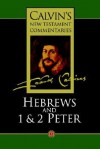 The Epistle Of Paul The Apostle To The Hebrews; And, The First And Second Epistles Of St Peter - John Calvin, W.B. Johnston