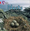 Nests - Elspeth Graham