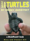 Why Are Turtles So Crazy Awesome? - Mary Hill, Stewart Hill