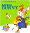 Little Bunny-Chubby Shape Book - Stephanie Calmenson