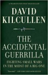 The Accidental Guerrilla: Fighting Small Wars in the Midst of a Big One - David Kilcullen