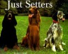 Just Setters (Just (Willow Creek)) - Steven Smith