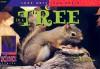 In a Tree - David M. Schwartz