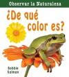 De Que Color Es? = What Color Is It? - Bobbie Kalman