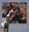 The True Story of Quintilius - Lois Szymanski