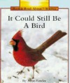 It Could Still Be a Bird - Allan Fowler