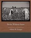 Bricks Without Straw - Albion Winegar Tourgée