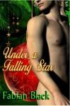 Under a Falling Star - Fabian Black