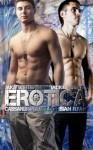 8 Gay Erotica Books Bundle - Sian Ryan, Jake Winterburn, Cassandra Danielson, Jack Lindsay