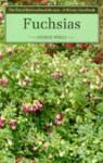 Fuchsias - George Wells